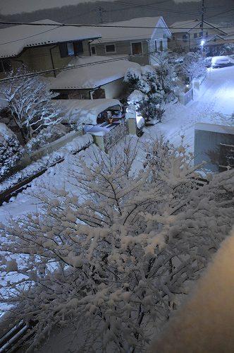 ここは雪国_c0124100_2333284.jpg