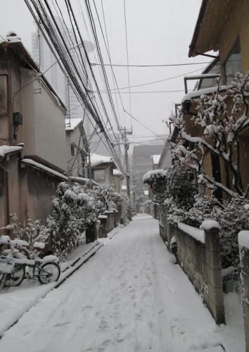 東京23区、13年ぶり大雪警報_a0057402_16211649.png