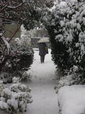 吹雪の中の搬入_d0322102_16103323.jpg
