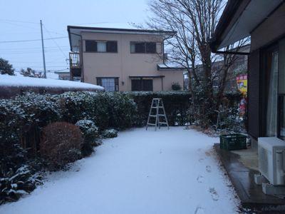 気象庁、広い範囲で大雪警戒を 東京23区で20センチ予想_b0163004_6494654.jpg