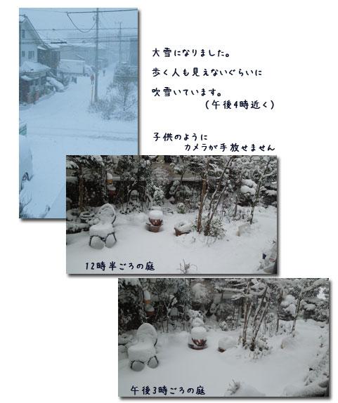 c0051105_1546351.jpg