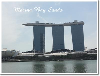 シンガポール~Part2_b0130107_10321083.jpg