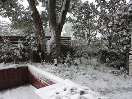 雪化粧_a0148909_15121861.jpg