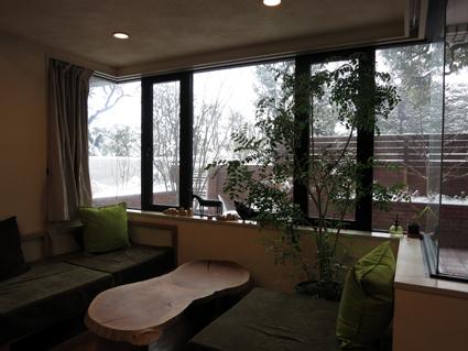 雪化粧_a0148909_1512951.jpg