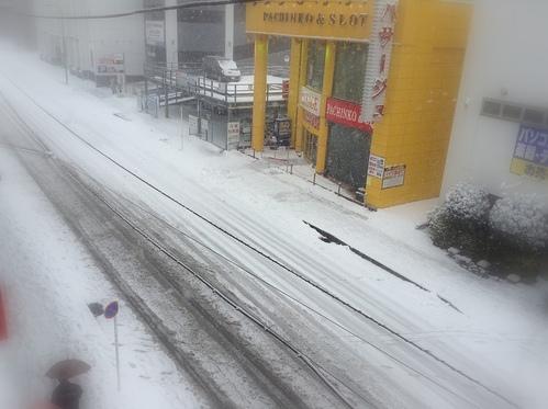 20年ぶりの大雪のようです(*_*;_c0294909_11512667.jpg