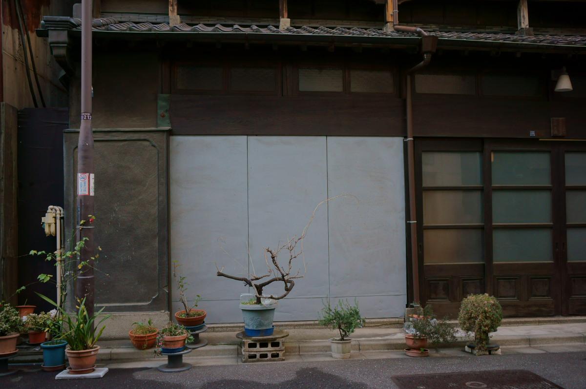 秋葉原  まだまだ現役昭和ハウス_b0061717_2505359.jpg