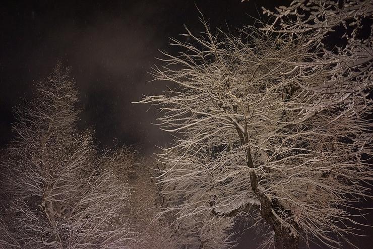 さっぽろの雪_b0297818_034092.jpg