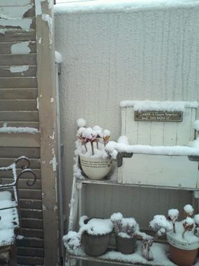 うちのベランダの積雪観察?_a0275527_18400809.jpg