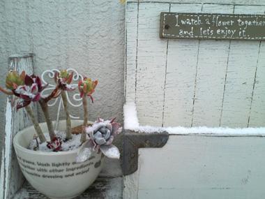 うちのベランダの積雪観察?_a0275527_18401389.jpg