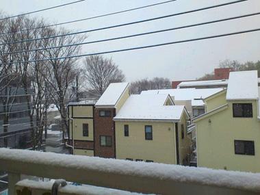 うちのベランダの積雪観察?_a0275527_18401781.jpg