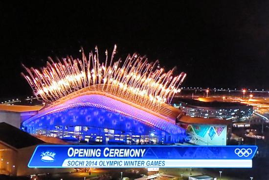 ソチ・オリンピック_a0086828_69419.jpg