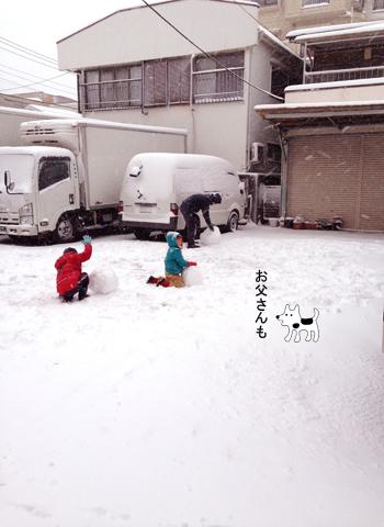 20年に一度の大雪_d0156336_22433739.jpg