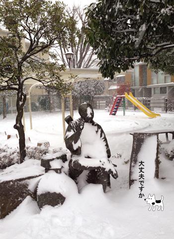 20年に一度の大雪_d0156336_22492252.jpg