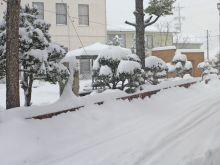 安曇野も大雪_c0094442_11502043.jpg