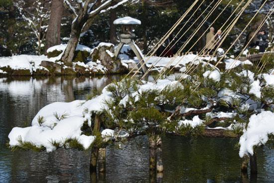 雪の兼六園(1)_c0093046_20441417.jpg