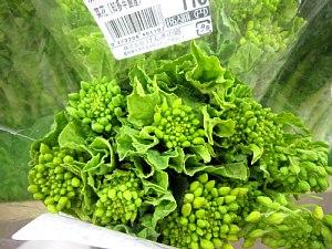 安くて美味しく栄養も豊富!_c0141652_16383486.jpg