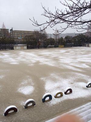 大会前日は雪⛄️_b0296154_22492572.jpg