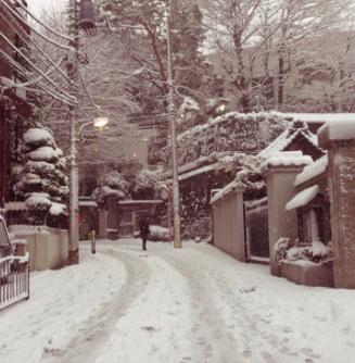 大雪_b0087556_23563124.jpg