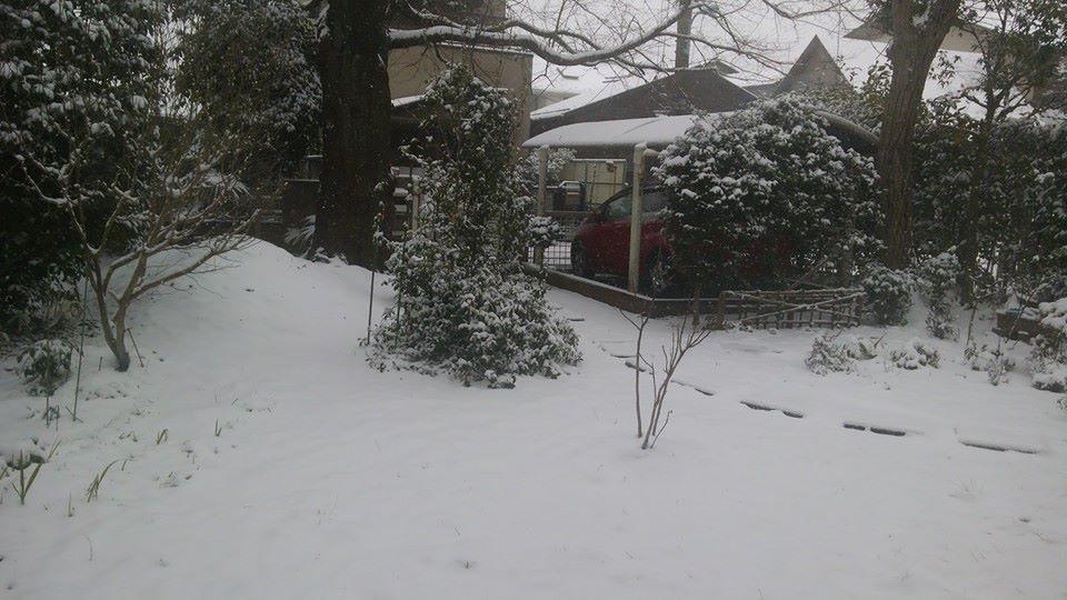 Winter Wonderland_e0116960_23364588.jpg