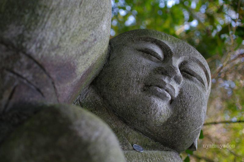 京都・一休寺_a0157263_13461342.jpg