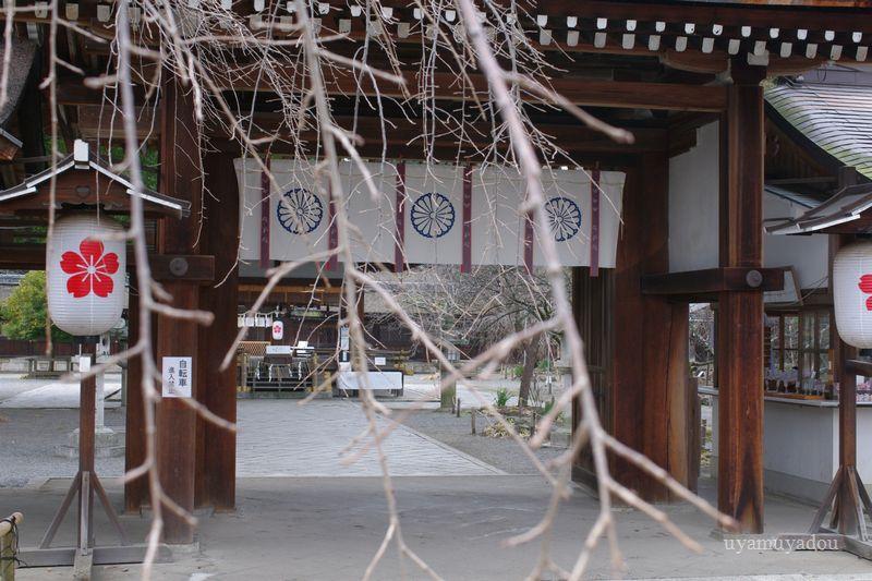 京都・平野神社_a0157263_22251515.jpg