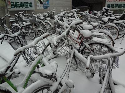 2014.2.8  大雪 @浅草橋_f0230666_211257.jpg