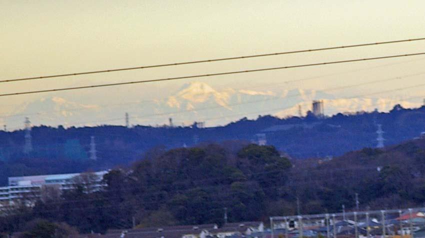 満開のオオシマザクラが4・5「北鎌倉ウォッチング」出迎えへ_c0014967_112996.jpg