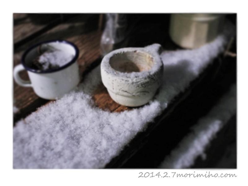 雪が積もった記念_b0123371_19324312.jpg