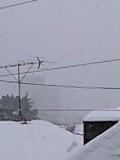 大雪警報_f0061674_11433074.jpg