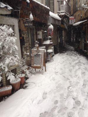 雪の日_b0249084_1652189.jpg