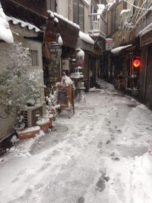 雪の日_b0249084_16521911.jpg