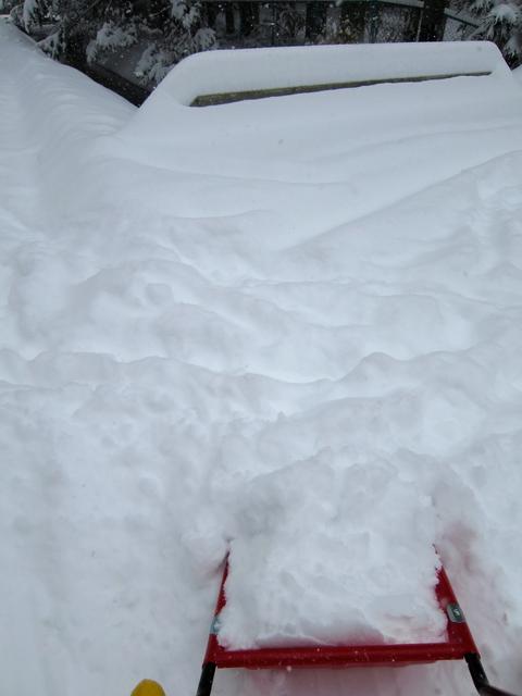 やっと降ったら大雪_d0133485_19441652.jpg
