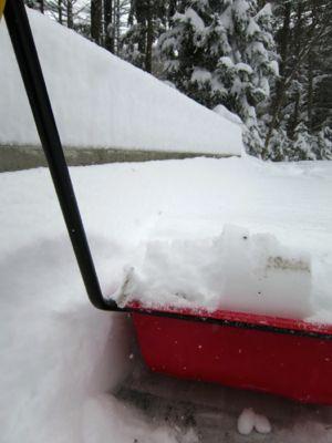 やっと降ったら大雪_d0133485_19453423.jpg