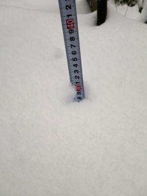 やっと降ったら大雪_d0133485_1946144.jpg
