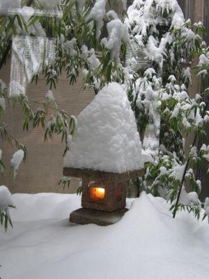 やっと降ったら大雪_d0133485_19494941.jpg