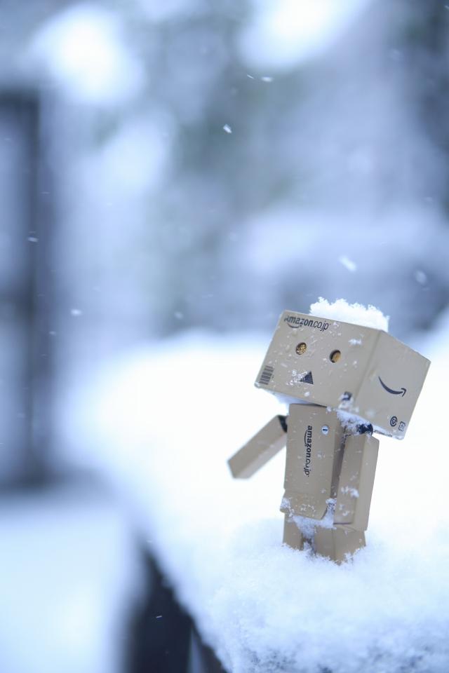 SNOW DANBOARD and MIKU and ..._e0001789_17274100.jpg