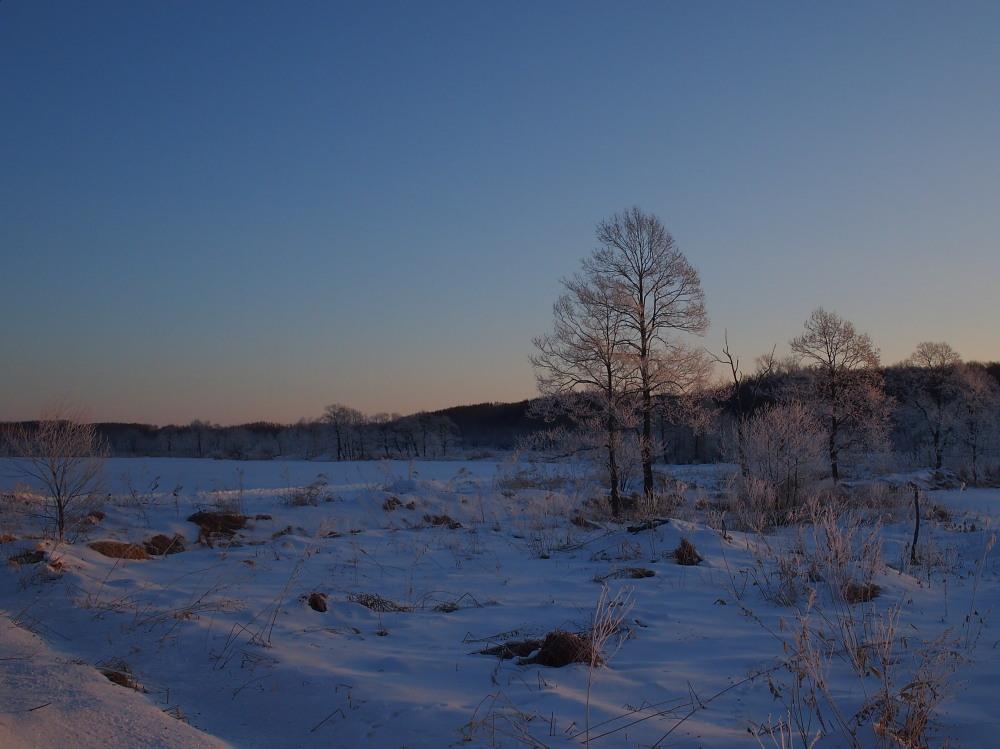 今朝は厳しい冷え込み・・マイナス22℃/宿のまわりの風景_f0276498_16524896.jpg