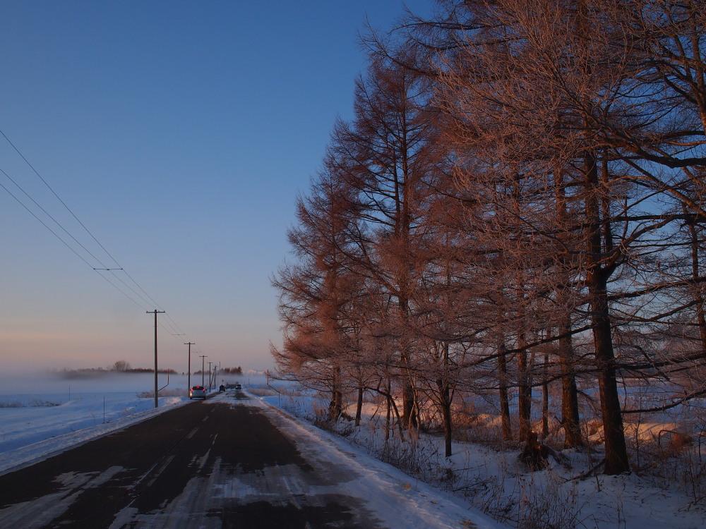 今朝は厳しい冷え込み・・マイナス22℃/宿のまわりの風景_f0276498_16541668.jpg