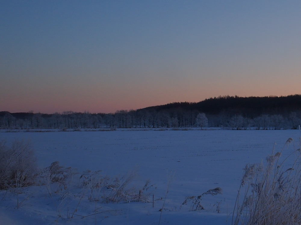 今朝は厳しい冷え込み・・マイナス22℃/宿のまわりの風景_f0276498_16545718.jpg