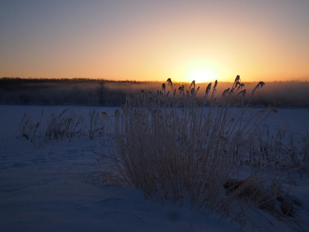 今朝は厳しい冷え込み・・マイナス22℃/宿のまわりの風景_f0276498_16553252.jpg