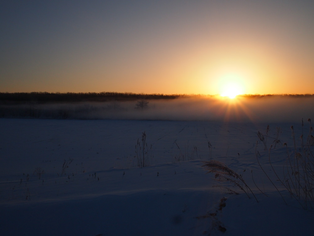 今朝は厳しい冷え込み・・マイナス22℃/宿のまわりの風景_f0276498_16561673.jpg