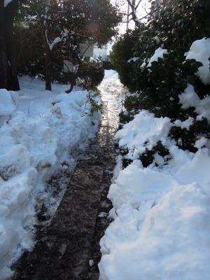 雪かきしました!_d0322102_1045797.jpg