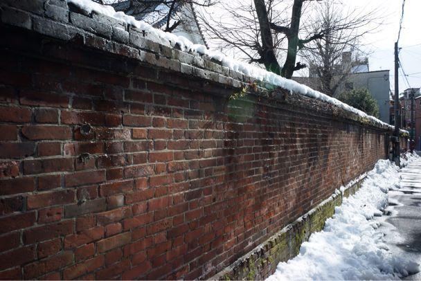 雪上散歩_d0147406_1528680.jpg
