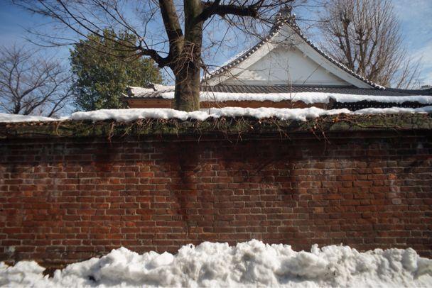 雪上散歩_d0147406_1528686.jpg