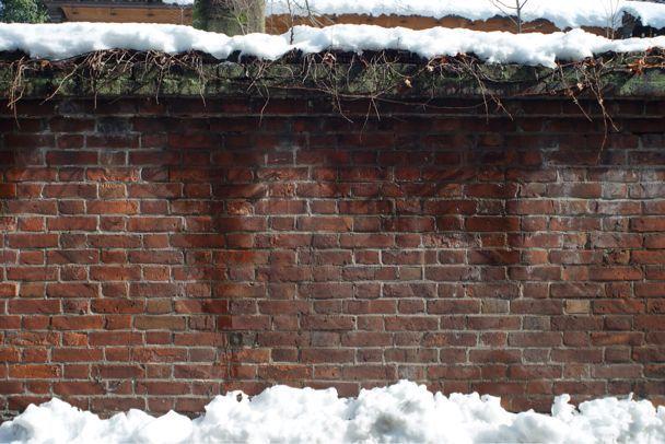 雪上散歩_d0147406_152875.jpg