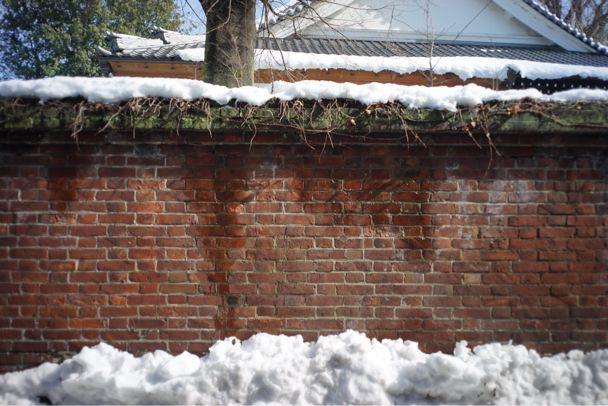 雪上散歩_d0147406_152882.jpg