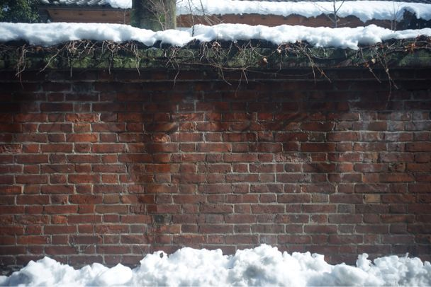 雪上散歩_d0147406_1528845.jpg