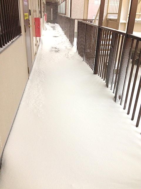 50年に一度の大雪?!_c0294909_15212741.jpg