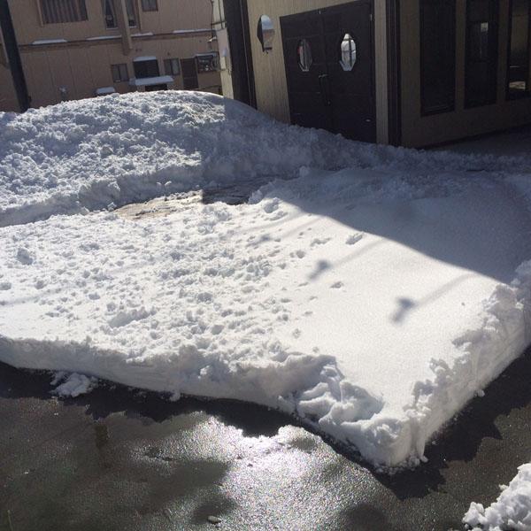 雪との戦い!!_c0097116_15115112.jpg