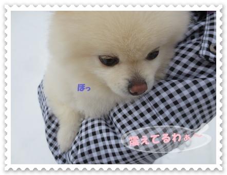 b0167519_1665662.jpg